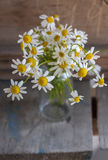 Bouquet of daisies  on wooden background Royalty Free Stock Photography