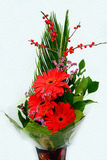 Bouquet with Daisy flower red gerbera and leaves Stock Photo
