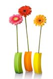 Bouquet from daisy-gerbera in glass vase Royalty Free Stock Images