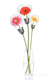 Bouquet from daisy-gerbera with heads inside lamps Royalty Free Stock Photos