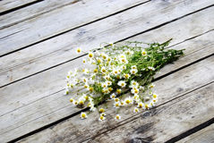 Bouquet of daisy on the pier. Bouquet of daisy on the wood pier stock photography