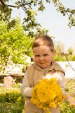 Bouquet of dandelions in children`s hands. hands holding a dandelion flowers bouquet in meadow. Selective focus stock images