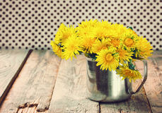 Bouquet dandelions in iron mug Stock Images