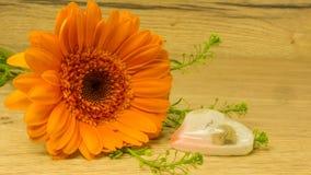 Bouquet dans l'orange avec un coeur Photos libres de droits