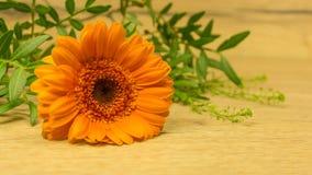 Bouquet dans l'orange avec un coeur Photo stock
