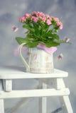 Bouquet dans la boîte d'arrosage Images libres de droits