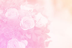 Bouquet dans le colo doux doux Photographie stock