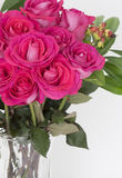 Bouquet of dark pink garden roses. Close to the left side and top of the image is a big bouquet of the roses in the clear glass vase. Roses are close together Royalty Free Stock Image