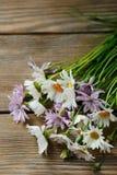 Bouquet de belles fleurs image libre de droits