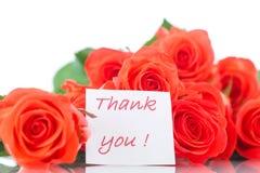 Bouquet de belles roses rouges Photo stock