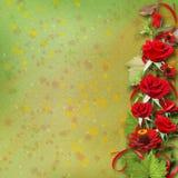 Bouquet de belles roses rouges pour la carte de voeux Image libre de droits