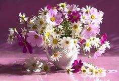 Bouquet de camomille de fleurs Photographie stock