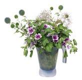 Bouquet de chardon de fleurs sauvages Images stock