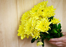 Bouquet de chrysanthème Photos libres de droits