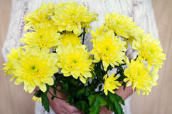 Bouquet de chrysanthème Photo stock