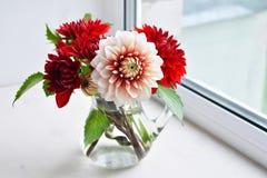Bouquet de dahlias d'automne Image libre de droits