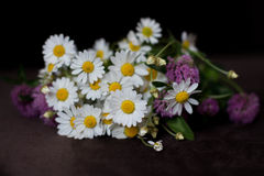 Bouquet de différentes fleurs Images libres de droits