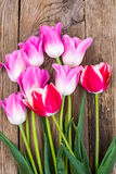 Bouquet de différentes tulipes de couleur Photographie stock