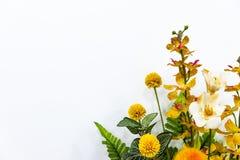 Bouquet de fleur sur le fond blanc images libres de droits