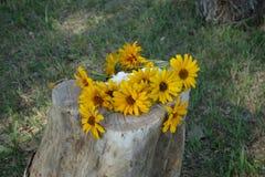 Bouquet de fleur sur un rondin Photo stock