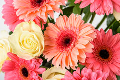 Bouquet de fleurs roses de Gerbera et de roses blanches images stock