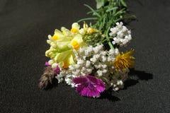 Bouquet de fleurs sauvages images stock