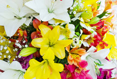 Bouquet de grandes fleurs de diverse couleur Bouquet des lis Photo libre de droits