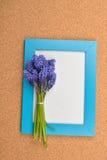 Bouquet de jacinthe de raisin bleue sur le tableau noir vide avec l'edg bleu Photographie stock libre de droits