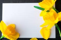 Bouquet de jonquille près de carte vide sur le fond noir Vue supérieure Copiez l'espace Jour de mères ou jour des femmes salutati Photo stock