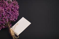 Bouquet de lilas Images stock
