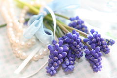 Bouquet de lilas de source Photo stock