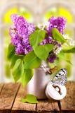 Bouquet de lilas ou d'aîné Image stock