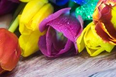 Bouquet de macro de plan rapproché de tulipes de carte de voeux rouge et pourpre jaune de tulipes Photo libre de droits