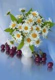 Bouquet de marguerite Image libre de droits