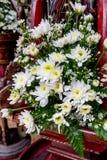 Bouquet de marguerite photos stock