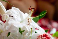 Bouquet de mariage avec les fleurs blanches. Anneaux Photographie stock libre de droits