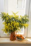 Bouquet de mimosa jaune dans une théière orange sur un rebord de fenêtre en bois et une soucoupe en mandarine sur un plan rapproc photo stock