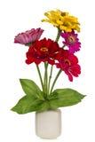 Bouquet de Minimalistic - mini fleurs de zinnia Photographie stock