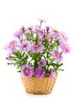 bouquet de panier Photographie stock libre de droits