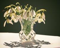Bouquet de perce-neige Images libres de droits