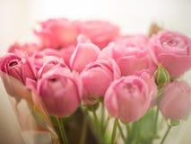 Bouquet de pivoine sensible pâle, roses enveloppées dans la cellophane photos libres de droits