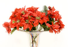 Bouquet de poinsettia Photographie stock