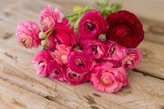 Bouquet de ranunculus rose se trouvant sur le dessus de table rustique Photo stock