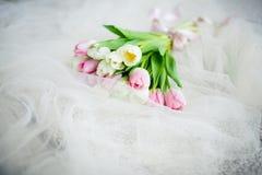 Bouquet de ressort des tulipes Images libres de droits