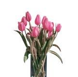 Bouquet de ressort des tulipes roses d'isolement sur le fond blanc dans le seau Photo stock