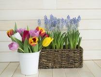 Bouquet de ressort pour la maman Vue de ci-avant L'enfant donne un cadeau Images stock