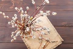 Bouquet de ressort pour la paume dimanche Photos stock