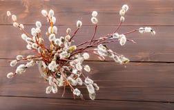 Bouquet de ressort pour la paume dimanche Image stock