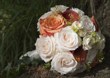 Bouquet de Rose Image stock