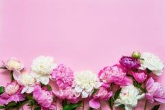 Bouquet de rose et blanc de pivoine de fleurs sur le fond rose Carte de voeux Copiez l'espace, vue sup?rieure photographie stock
